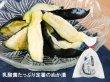 画像3: 天王寺かぶら菜漬ぬか漬とお吸物2種【期間限定】 (3)